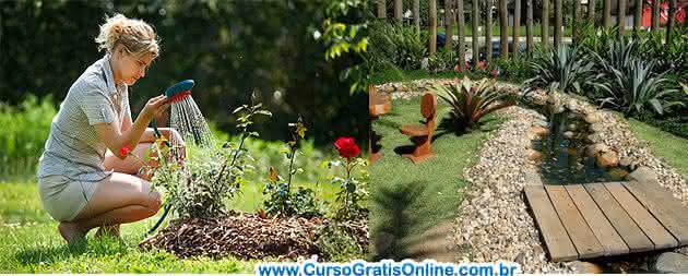como cuidar de um jardim