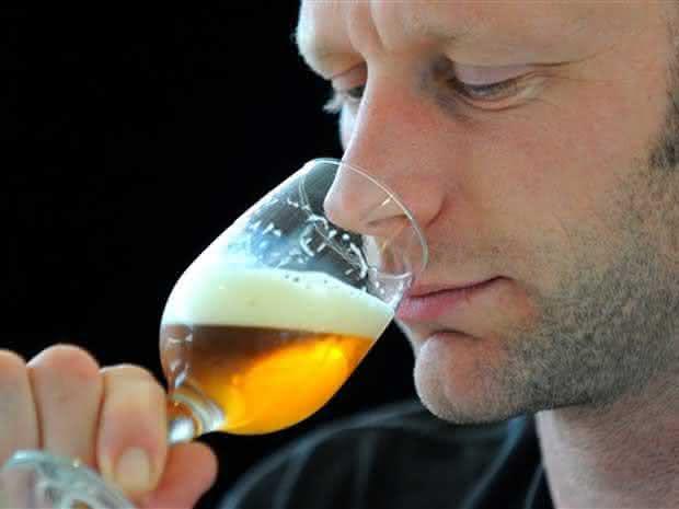 degustador de cerveja