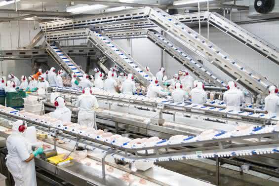 engenharia de produção de alimentos